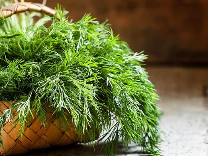 Bạn sẽ phải bất ngờ trước công dụng của rau thì là chữa dạ dày