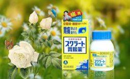 Thuốc dạ dày Nhật Bản