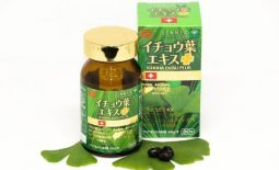 Top 4 thuốc rối loạn tiền đình của Nhật: Công dụng, cách dùng