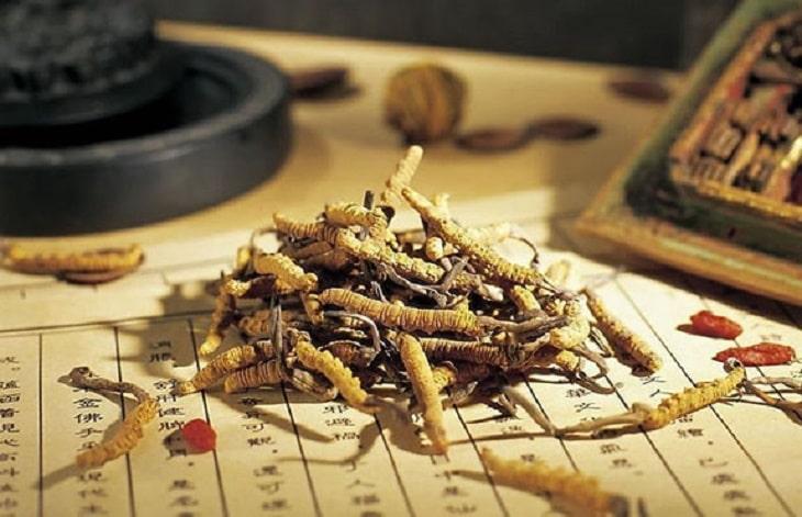 Một số vị thuốc Đông y trị vảy nến đường uống