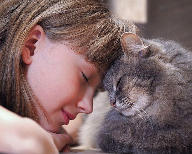 Các yếu tố dị nguyên như lông động vật có thể gây bệnh viêm da cơ địa