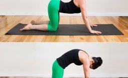 Bài tập gai cột sống hiệu quả nhất - Luyện tập mỗi ngày cho cơ thể dẻo dai khỏe mạnh