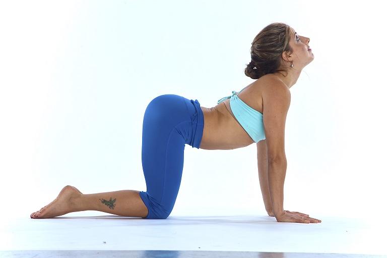Tư thế con bò trong yoga