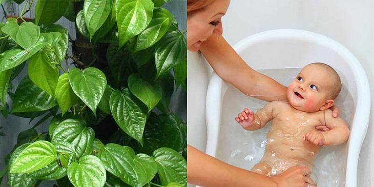 Tắm nước lá giúp giảm mẩn đỏ trên da