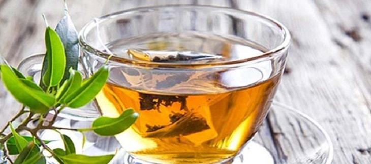 Sử dụng tinh dầu chiết xuất từ bạch đàn cũng là cách điều trị viêm xoang trán tại nhà được nhiều người ưa chuộng