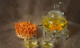 Hướng dẫn cách pha trà đông trùng hạ thảo vừa thơm ngon vừa bổ dưỡng
