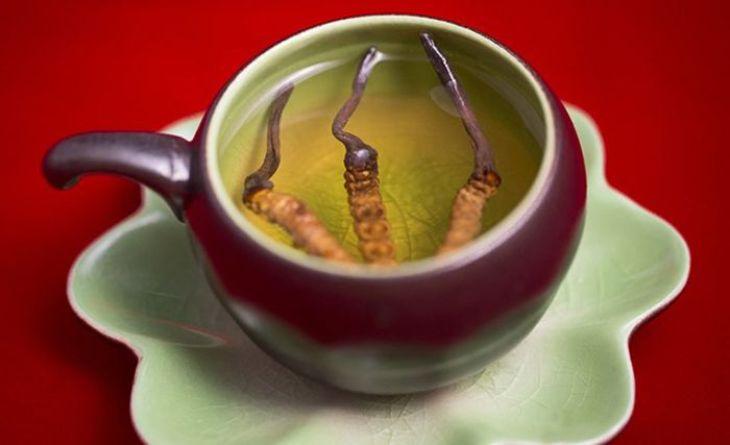 Cách pha trà đông trùng hạ thảo thơm ngon, bổ dưỡng