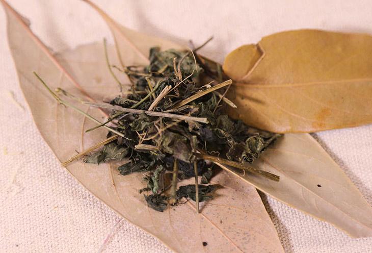 Toàn bộ cây thuốc được phơi sấy khô để làm dược liệu