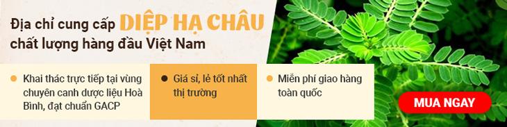 Dược liệu Vietfarm cao cấp chất lượng cao