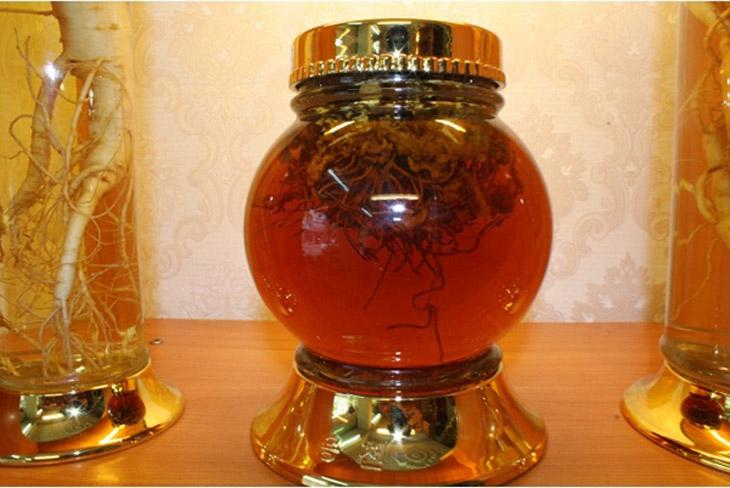 Đông trùng hạ thảo ngâm mật ong có tác dụng gì - Thuốc quý đại bổ cho cơ thể