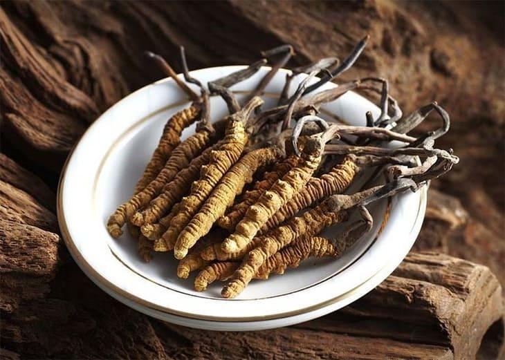 Đông trùng hạ thảo ngâm rượu có rất nhiều tác dụng với sức khỏe và sắc đẹp