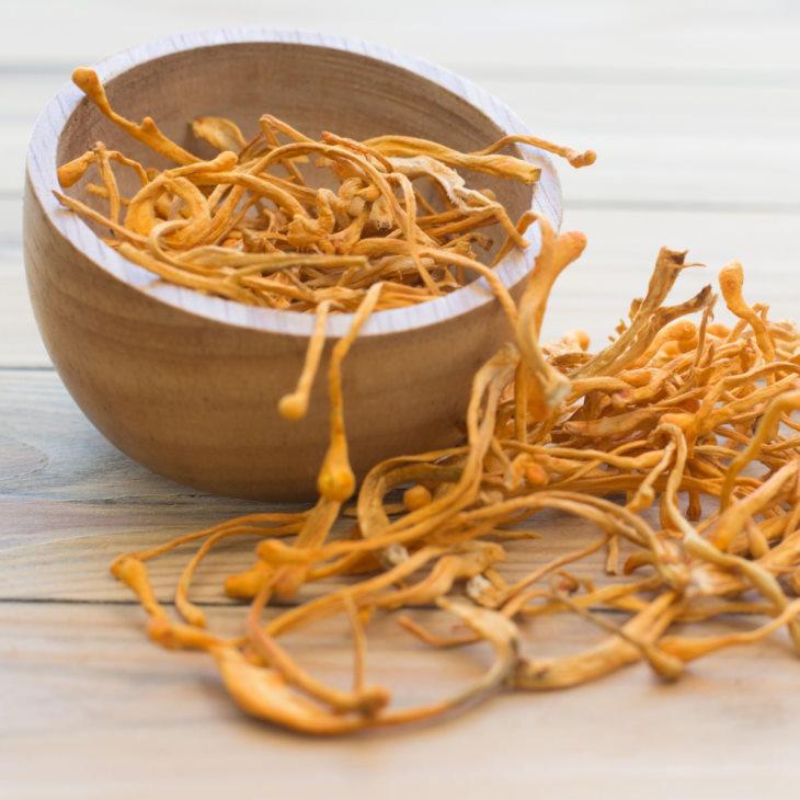 Trà đông trùng hạ thảo là thức uống rất tốt cho sức khoẻ