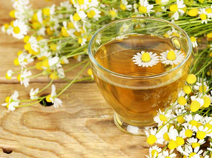 Có hai loại trà phổ biến và có giá trị dinh dưỡng nhất