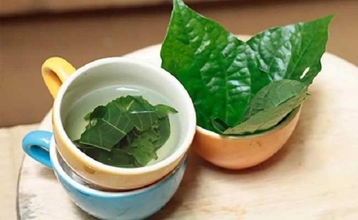 Bài thuốc sắc giúp hạ khí, tán hàn, chữa thoát vị đĩa đệm từ sâu bên trong