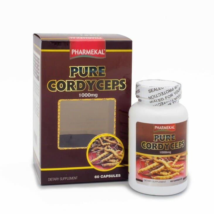 Viên uống đông trùng hạ thảo Pure Cordyceps hỗ trợ điều trị các bệnh mãn tính hiệu quả