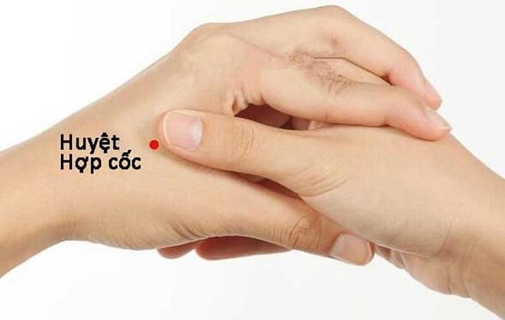 Huyệt Hợp Cốc là một trong những huyệt tổng của cơ thể, chủ vùng đầu mặt, nằm ở giữa ngón tay cái và ngón trỏ