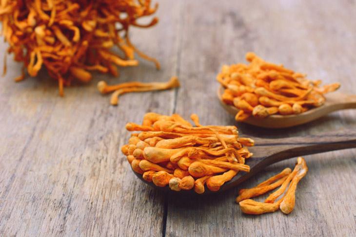Cách ăn đông trùng hạ thảo đúng cách giúp hấp thụ trọn vẹn dưỡng chất tinh tuý