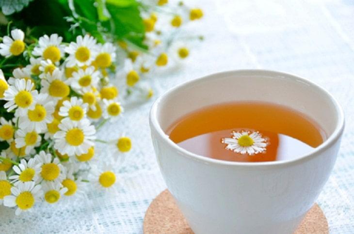 Dùng trà cúc la mã để chữa nhiệt miệng