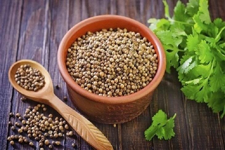 Cách chữa nhiệt miệng nhanh khỏi nhất bằng hạt rau mùi