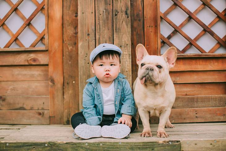Hạn chế cho trẻ tiếp xúc với thú cưng như chó mèo