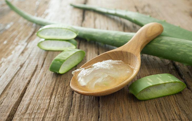 Người bệnh có thể sử dụng dầu dừa và nha đam chữa bệnh á sừng