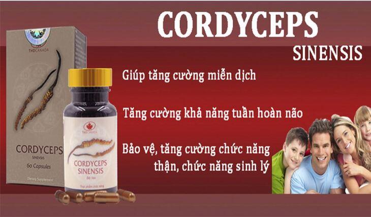 Viên uống Cordyceps Sinensis THD không sử dụng cho phụ nữ có thai và đang cho con bú