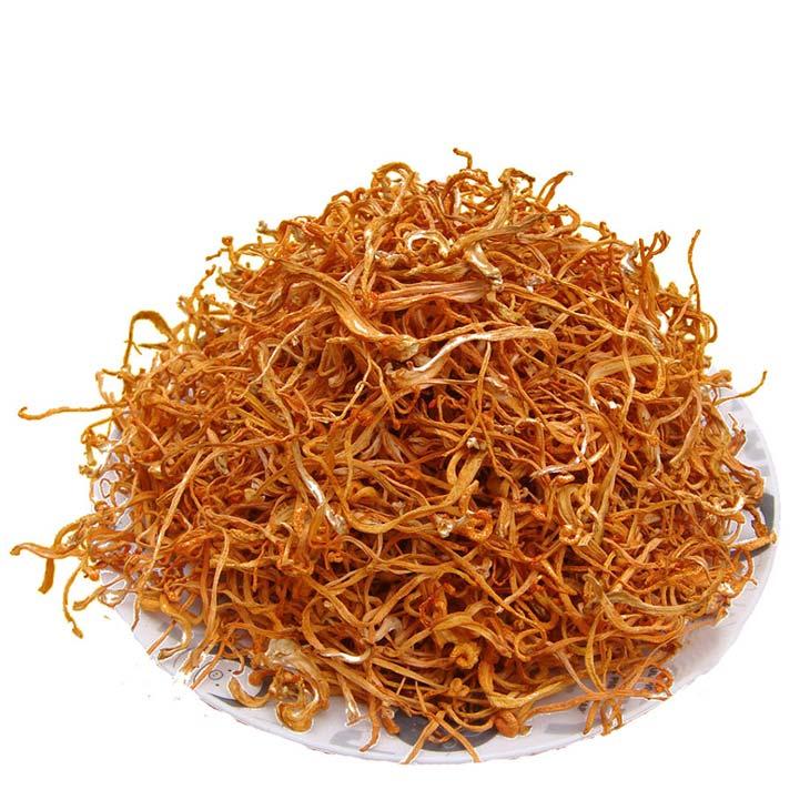 Sấy thăng hoa đảm bảo đông trùng hạ thảo khô ráo, bảo quản và sử dụng được lâu hơn loại tươi