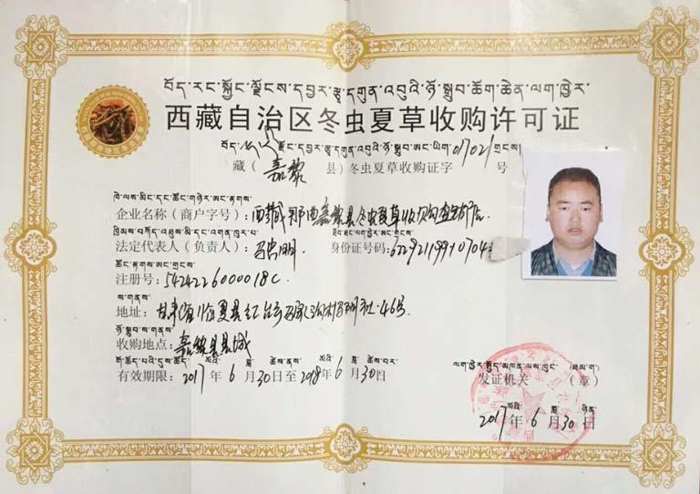 Giấy cấp phéo mua đông trùng hạ thảo nguồn gốc Tây Tạng
