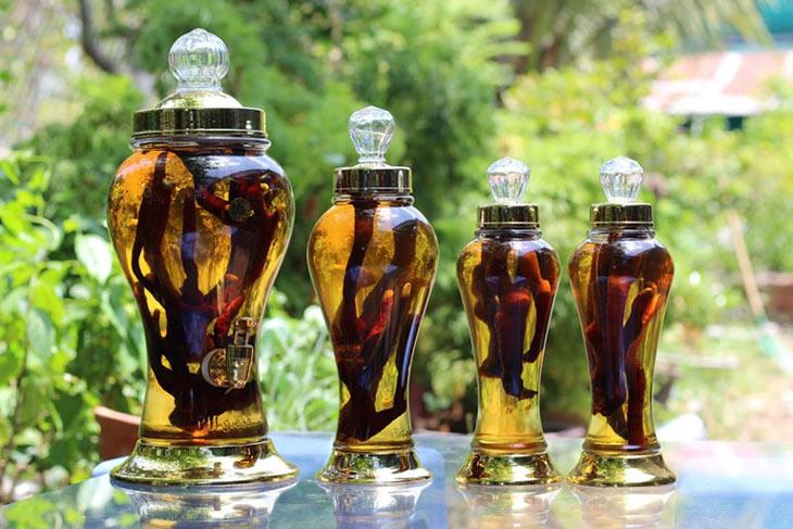 Rượu thuốc tăng cường sinh lực, bồi bổ cơ thể, kích thích ăn ngon