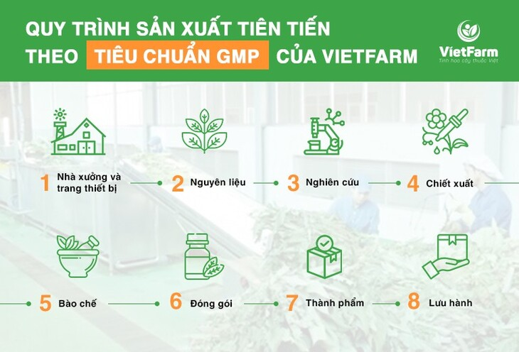 Quy trình nuôi cấy tiêu chuẩn của Vietfarm đã tạo nên những sản phẩm tuyệt vời cho sức khỏe