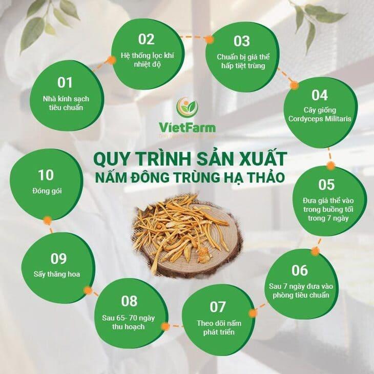 Quy trình nuôi trồng đông trùng hạ thảo Việt Nam tại cơ sở Vietfarm