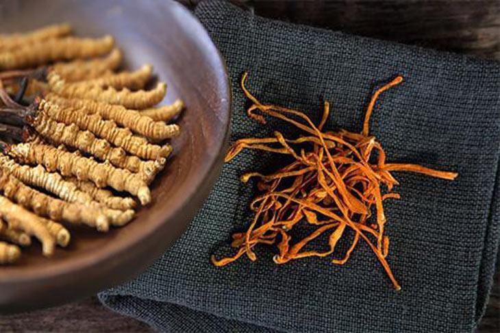 Người già sử dụng đông trùng hạ thảo giúp tăng sức đề kháng, hệ miễn dịch