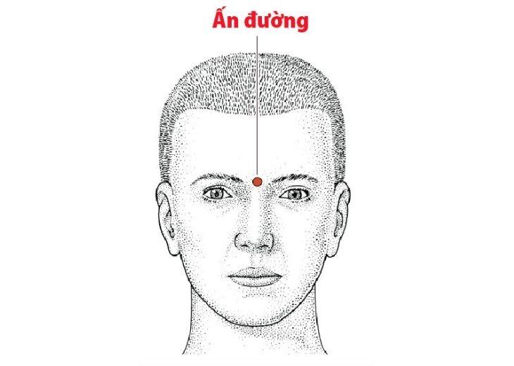 Ấn đường là huyệt nằm chính giữa trên đường nối lông mày