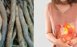 Chữa đau dạ dày bằng rễ sim