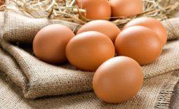 Ho có nên ăn trứng