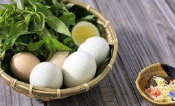 Ho có nên ăn trứng vịt không