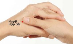 Huyệt hợp cốc: Huyệt vạn năng và ứng dụng trong điều trị bệnh