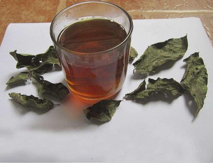 Đun nước cây khôi uống để điều trị bệnh đau dạ dày