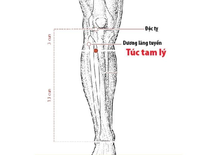 Huyệt túc tam ký có nhiều công dụng trong điều trị bệnh