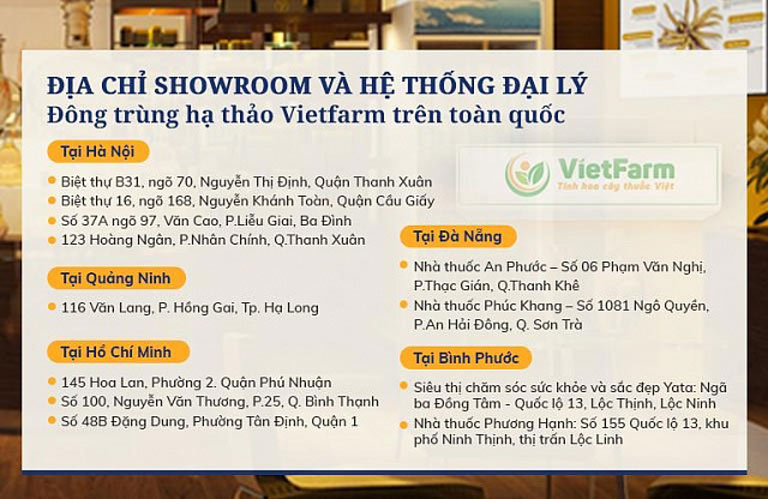 Hệ thống showroom và đại lý toàn quốc của Đông trùng hạ thảo Vietfarm