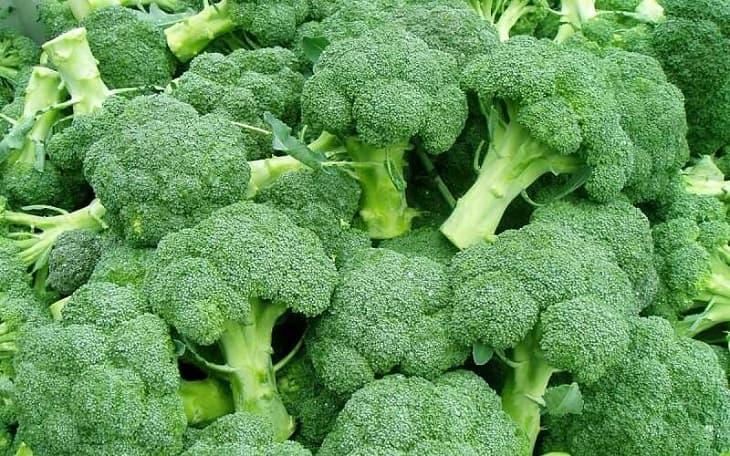 Súp lơ là một trong những loại rau người bị suy thận mãn nên tăng cường bổ sung