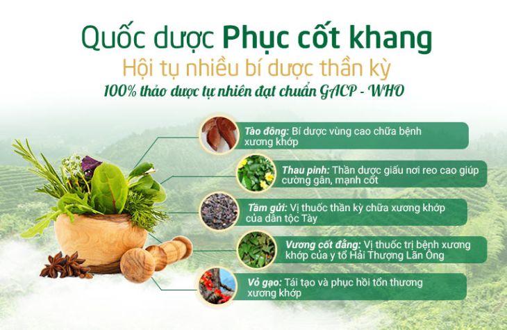 Quốc dược Phục cốt khang hòa quyện nhiều bí dược lần đầu tiên được nghiên cứu bài bản tại Việt Nam