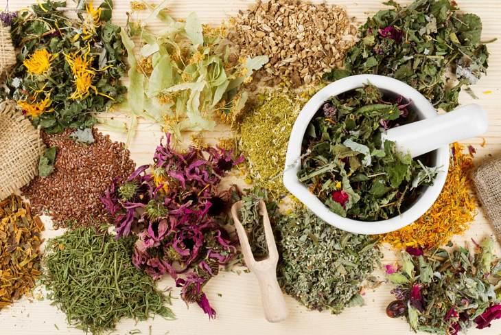Các bài thuốc Đông y giúp cân bằng axit uric và hạn chế mắc bệnh gout, sỏi thận