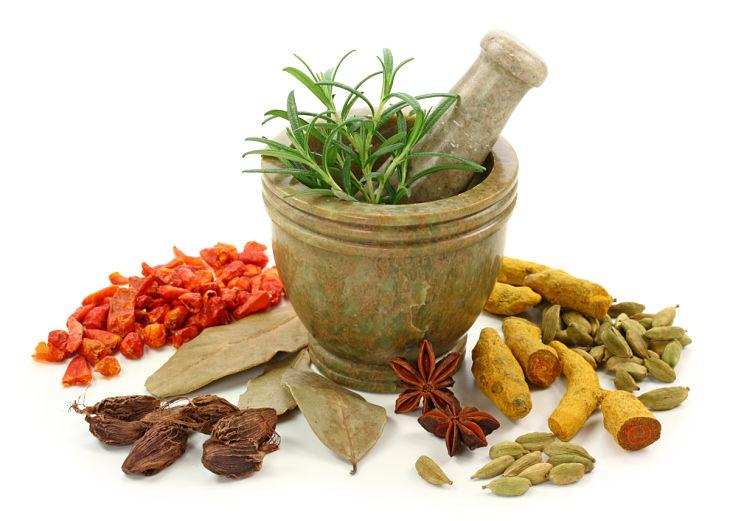 Các bài thuốc Đông y có tác dụng bổ khí hoạt huyết