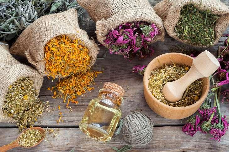 Thuốc nam chữa gout thường lành tính, có nguồn gốc thiên nhiên nên an toàn khi sử dụng