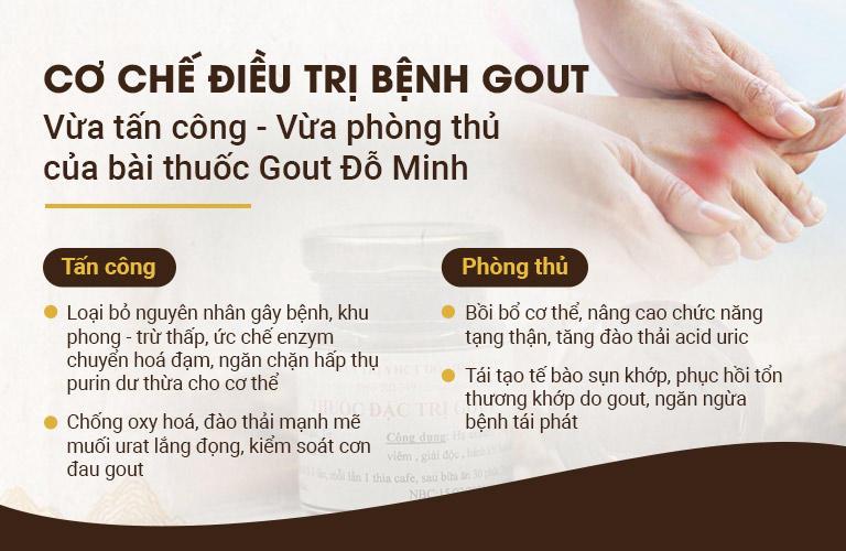 Cơ chế tác dụng bài thuốc Gout Đỗ Minh