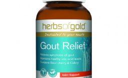 Thuốc Herb Of Gold Gout Relief là dòng viên uống giảm đau dành cho người bị gout của Úc