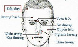 Đầu Duy là huyệt đạo quan trọng trong cơ thể người
