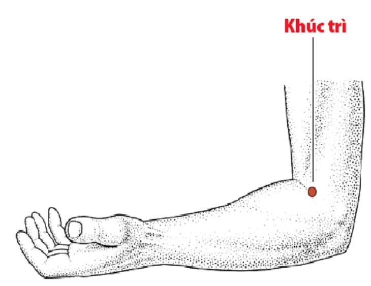 Huyệt khúc trì là huyệt đạo nằm trên cẳng tay