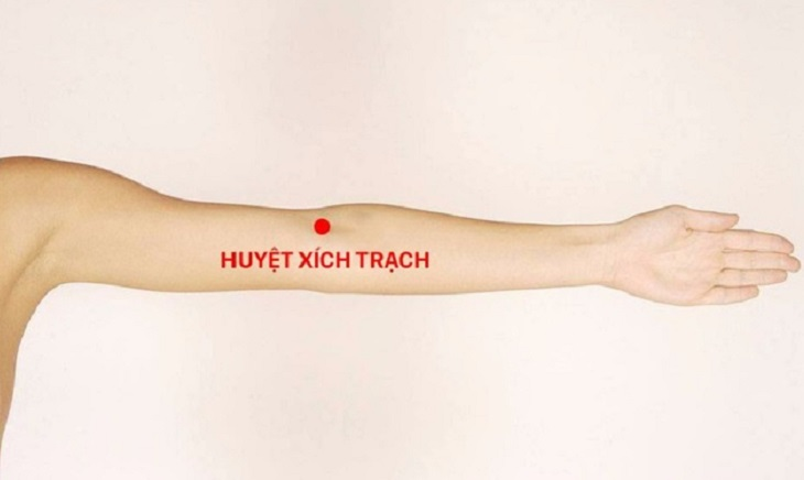 Huyệt xích trạch nằm bên ngoài đường gân cơ của cánh tay